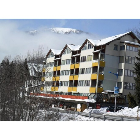 Apartamenty CENTRAL - Bad Kleinkircheim