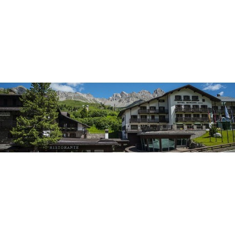 Hotel MONZONI**** - Passo San Pellegrino
