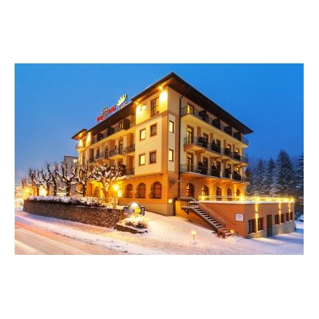Hotel EURO YOUTH KRONE*** - Bad Gastein